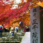 京都大原三千院の紅葉2020年の見ごろはいつ?アクセスや駐車場また渋滞混雑は?