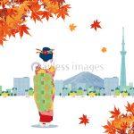 東福寺の紅葉2019年の見ごろは?境内の絶景スポット3選と周辺の紅葉散策情報!