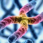 たけしの家庭の医学!老化の速度を遅らせる長寿遺伝子の正体とは!!