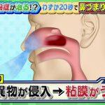 花粉症 アルコールで鼻の粘膜がうっ血するって!!